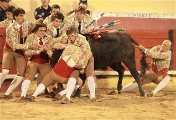 Jorge Vicente dos Amadores de Alenquer -