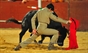 Imagens da corrida de toiros e variedades taurinas em Alenquer