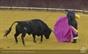 As imagens do festival taurino no Campo Pequeno