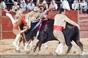 As imagens da corrida de Samora Correia