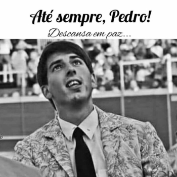 Funeral o forcado Pedro Primo