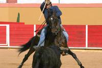 João Moura Caetano adquire novo cavalo