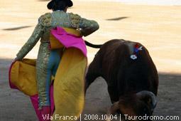 Galeria Fotográfica - Vila Franca de Xira - 04 de Outubro de 2008