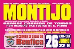 II Corrida das Casas do Benfica no Montijo