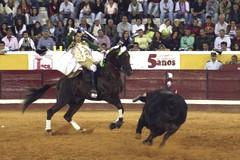 Vitor Ribeiro reforça a sua quadrilha para 2010
