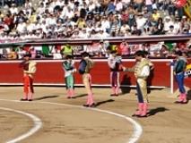 I Corrida da  Feira do Gado em Almodóvar del Campo (Ciudad Real)