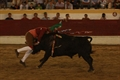 Fotos Terrugem - primeira corrida Taurodromo.com