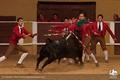 Arruda dos Vinhos, Concurso de ganadarias 2011