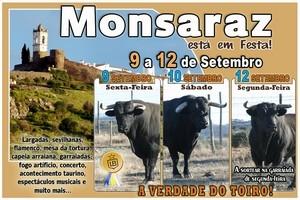 Castelo de Monsaraz - Está em Festa!