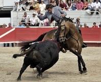 Feira do Cavalo de 2012 em Jerez de la Frontera