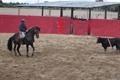 Imagens do treino dos jovens amadores Luís Rouxinol Jr e Mara Pimenta