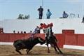 Imagens da corrida de Garvão