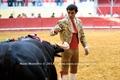Reportagem fotográfica do 53º concurso de Ganadarias de Évora