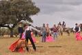 Academia de Toureio do Campo Pequeno tenta em campo aberto