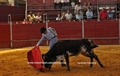 Debute da Academia de Toureio do Campo Pequeno em Espanha
