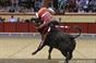 Imagens da corrida de dia 9 de Outubro em Vila Franca de Xira