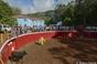 2º dia do ?Ciclo de Tentas Comentadas? realizado na Ilha Terceira