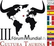 Juan Medina fez uma lúcida apresentação da situação económica actual da Festa Brava