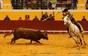 Imagens do Festival de Novas Oportunidades no Coliseu de Redondo