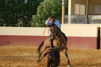 Joaquim Bastinhas sofreu ontem um acidente