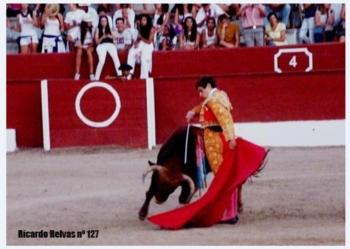 Diogo Peseiro contratado para a feira de Mont-de-Marsan