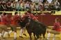 Imagens da corrida comemorativa do cinquentenário da