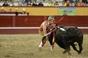 Concurso Ibérico de Ganadarias