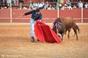 Imagens do Festival de Serpa