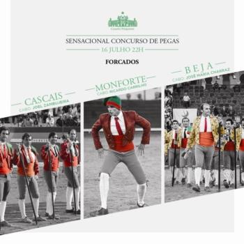 Campo Pequeno - Amanhã há competição entre jovens cavaleiros de dinastia e três grupos de forcados