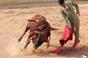 As imagens da aula prática do certame internacional do cabo da Lezíria - dia 10