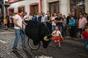 Desfile Taurino e Espera de Gado para Crianças