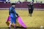 As imagens do Campo Pequeno - Homenahem a Luis Miguel da Veiga