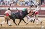 As imagens da corrida do Concurso de ganadarias em Coruche