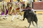 As imagens da corrida mista do Cartaxo