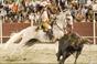 As imagens da corrida de São Cristovão