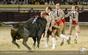 As imagens da corrida de Gala em Salvaterra