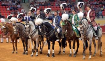 Empresa de Évora divulga cavaleiros contratados